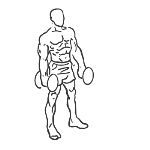 Forward Lunge with Bicep Curl - Step 1
