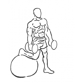 Bicep Curl on Stability Ball with Leg Raised - Step 1