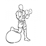 Bicep Curl on Stability Ball with Leg Raised - Step 2