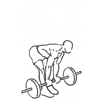 Bicep Curl with Deadlift - Step 1