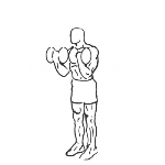 Bicep Curl Squat - Step 2