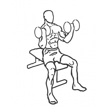 Seated Dumbbell Inner-Bicep Curl - Step 1