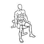 Seated Dumbbell Curl - Step 1