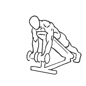 Prone Incline Bicep Curls - Step 1