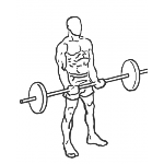 Close-Grip Standing Barbell Curl - Step 1