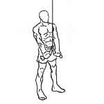 Triceps Pushdown - Rope Attachment - Step 2