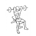 Seated Overhead Barbell Triceps Extension - Step 1