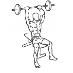 Seated Overhead Barbell Triceps Extension - Step 2