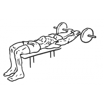 Lying Close-Grip Barbell Triceps Extension Behind Head - Step 2