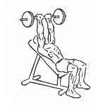 Barbell Incline Triceps Extension - Step 2