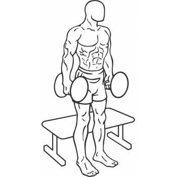 Dumbbell Squat To A Bench - Step 1