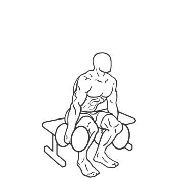 Dumbbell Squat To A Bench - Step 2