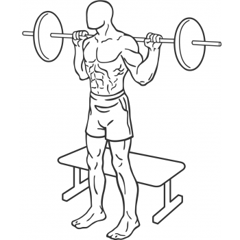 Squat To Bench - Step 1