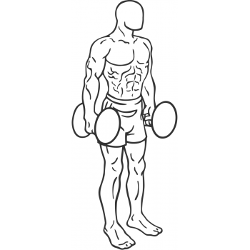 Dumbbell Squat - Step 1