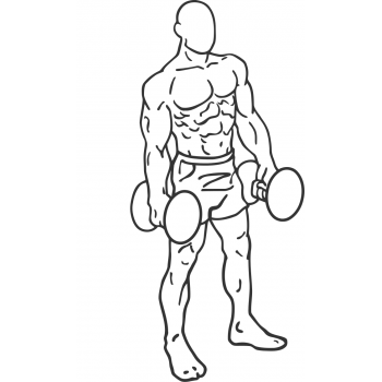 Dumbbell Rear Lunge - Step 1