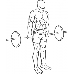 Barbell Hack Squat - Step 1
