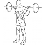 Barbell Squat - Step 1