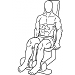 Seated Leg Curl - Step 1
