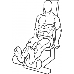 Seated Leg Curl - Step 2