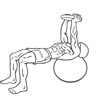 Pullover On Stability Ball With Weight - Step 1