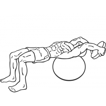 Pullover On Stability Ball With Weight - Step 2