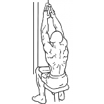 V-Bar Pulldown - Step 2