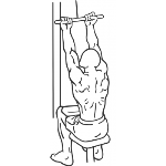 Underhand Cable Pulldowns - Step 2