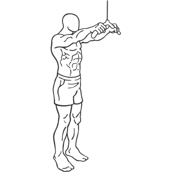 Straight-Arm Pulldown - Step 2