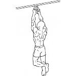 Narrow Parallel Grip Chin-ups - Step 2