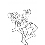 Incline Dumbbell Press - Step 2