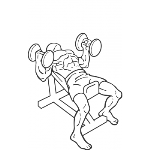 Hammer Grip Incline DB Bench Press - Step 2