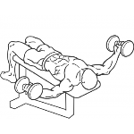 Dumbbell Decline Flys - Step 2