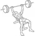 Barbell Bench Press - Medium Grip - Step 1