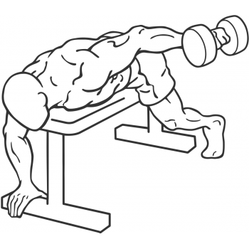 Dumbbell Lying One Arm Rear Lateral Raise - Step 1