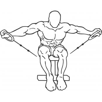 Cable Seated Rear Lateral Raise - Step 1