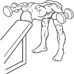 Bent Over Rear Delt Row With Head On Bench - Step 1
