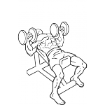 Dumbbell Incline Bench Press - Step 2