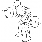 Barbell Rear Delt Row - Step 2
