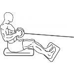 Seated Cable Rows - Step 1