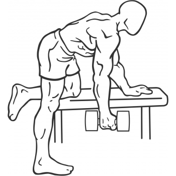 Rear Deltoid Row - Step 2
