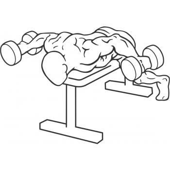 Dumbbell Lying Rear Lateral Raise - Step 1