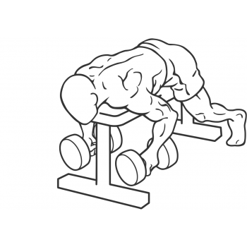 Dumbbell Lying Rear Lateral Raise - Step 2