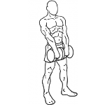 Standing Dumbbell Upright Row - Step 2