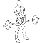 Upright Barbell Row - Step 2