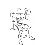 Arnold Dumbbell Press - Step 2
