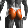 Glutes Exercises